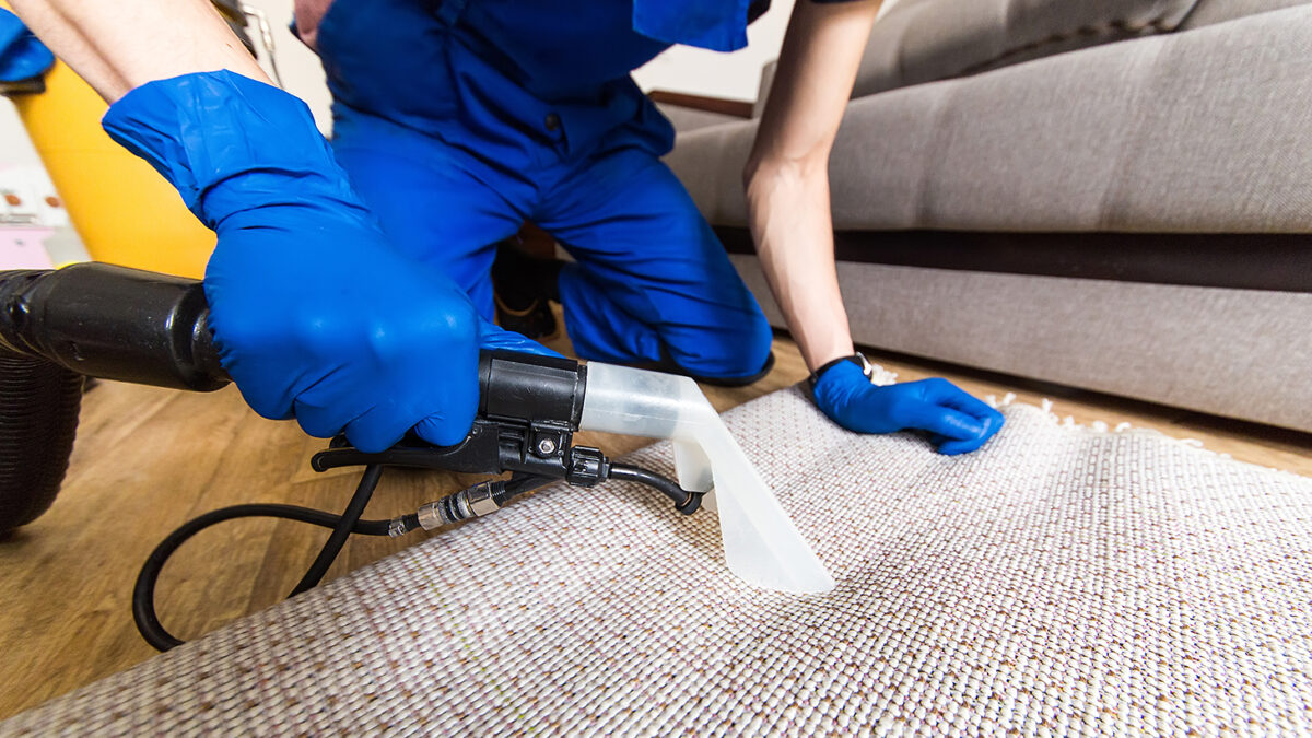 Why Carpet Cleaning Needed After Flood Damage